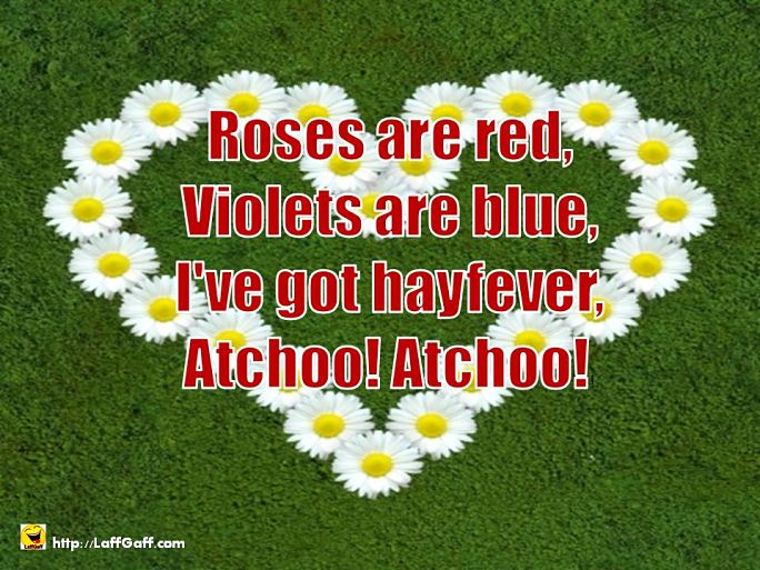 Funny Bitter Anti Valentine S Day Poems Laffgaff Home Of Laughter