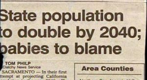 Babies To Blame Funny Headline