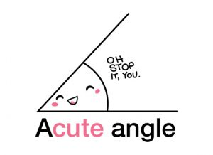 A Cute Angle - Maths T Shirt