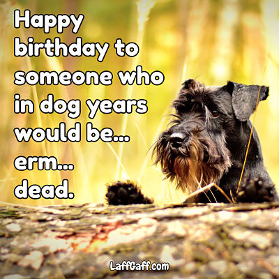Dog years happy birthday wishes