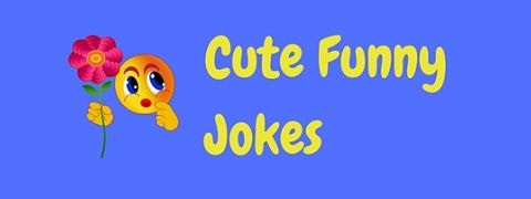 Really cute jokes