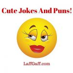 Cute Jokes And Puns