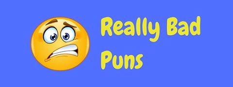 A collection of really bad puns so awful you just have to laugh!