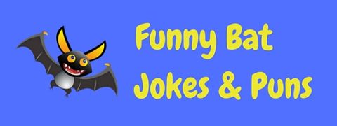 Featured image for a page of funny bat jokes to get your teeth into!