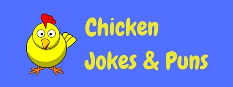 A page of hilarious chicken jokes and puns