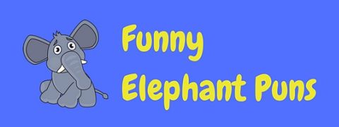 A collection of the greatest elephant puns