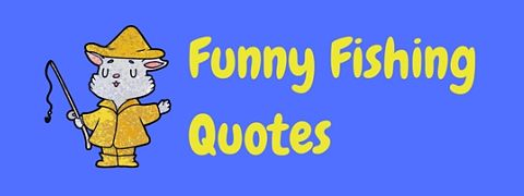 There's no better catch than these funny fishing quotes and sayings!