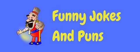 Collections of funny jokes and puns to make you laugh!