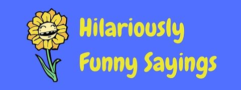 Featured image for a page of hilariously funny sayings and witticisms.