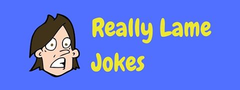 Collections of really lame jokes to make you groan!