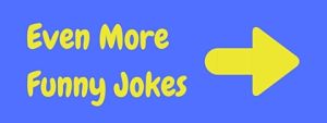 Even more funny jokes pages!