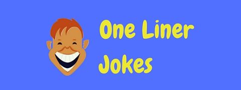 Only the best one liner jokes made it into this collection!