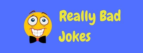 A selection of jokes that are really bad, so bad you'll have to laugh!