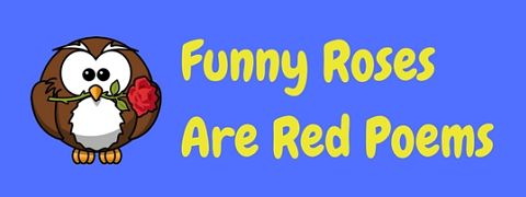 Rose are red poem funny