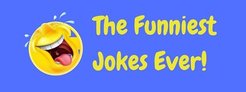 A collection of the funniest jokes ever