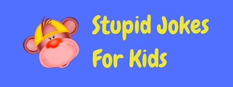 A selection of hilariously stupid jokes for kids!