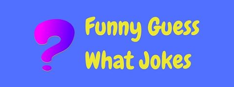 A collection of funny guess what jokes
