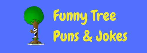 We've branched out to bring you these tree-mendous tree puns and jokes!