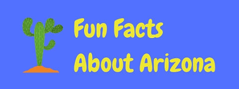 Here are some interesting and fun Arizona facts.