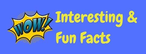 Interesting and fun facts to astonish and amaze!