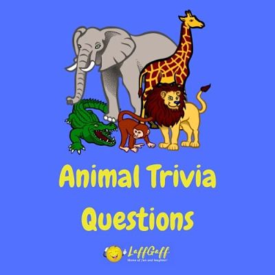 Featured image for a page of testing animal trivia questions to give your brain a workout.