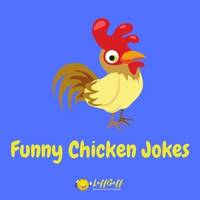 Featured image for a page of funny chicken jokes and puns.