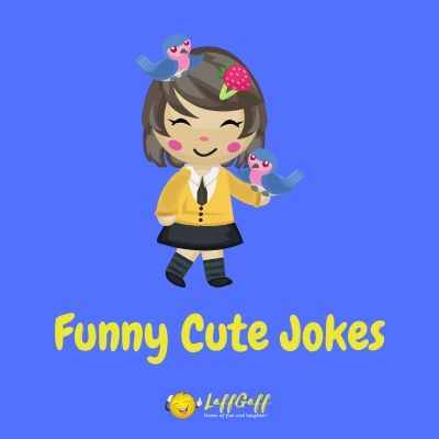 Featured image for a page of cute jokes and puns.