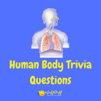 Featured image for a page of anatomy and human body trivia questions and answers.