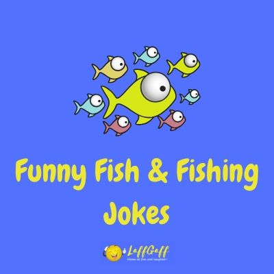 Featured image for a page of funny fishing and fish jokes.