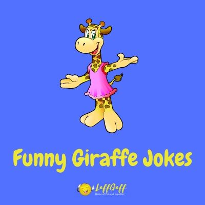 Featured image for a page of funny giraffe jokes and puns.