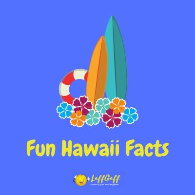 Learn about the 50th US state with these fun facts about Hawaii.