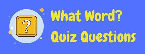 Header image for a page of what word quiz questions.