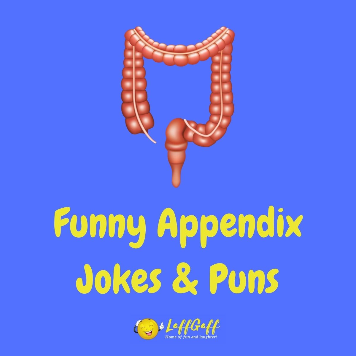 Featured image for a page of funny appendix jokes and puns.