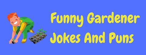Header image for a page of funny garden and gardener jokes.