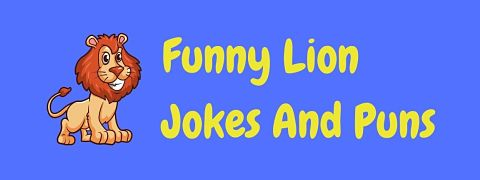 Header image for a page of funny lion jokes and puns.