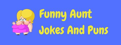 Header image for a page of funny aunt jokes and puns.