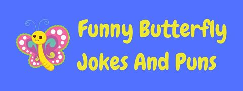 Header image for a page of funny butterfly jokes and puns.