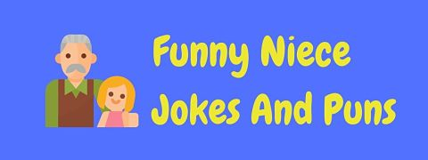 Header image for a page of funny niece jokes and puns.