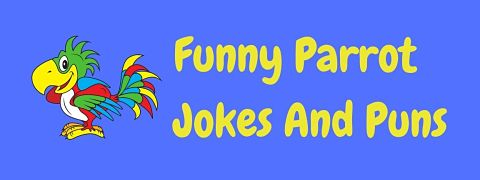 Header image for a page of funny parrot jokes and puns.