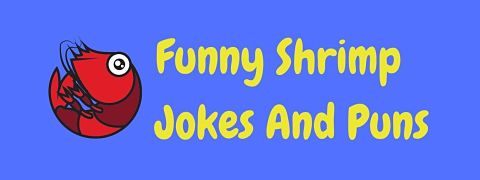 Header image for a page of funny shrimp jokes and puns.