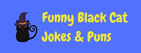 Header image for a page of funny black cat jokes and puns.