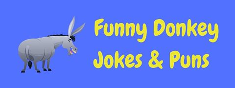 Header image for a page of funny donkey jokes and puns.