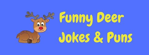 Header image for a page of funny deer jokes and puns.