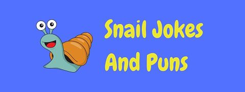 Header image for a page of funny snail jokes and puns.