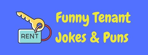 Header image for a page of funny tenant jokes and puns.