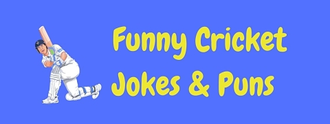 Header image for a page of funny cricket jokes and puns.