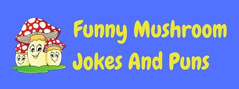 Header image for a page of funny mushroom jokes and puns.