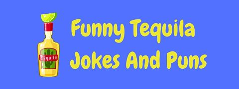 Header image for a page of funny tequila jokes and puns.