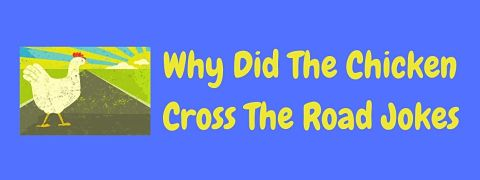 Header image for a page of funny Why did the chicken cross the road jokes.