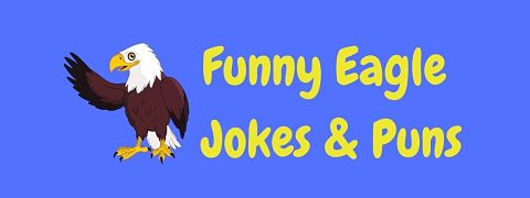 Header image for a page of funny eagle jokes and puns.